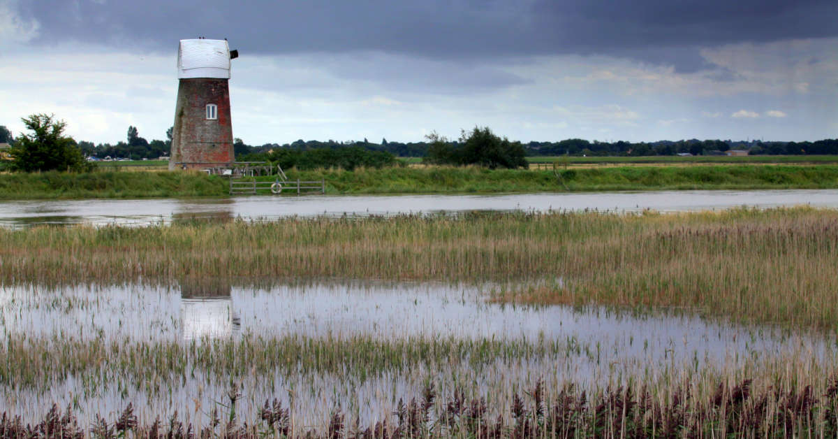 Red Mill near Raven Hall on Langley Marshes